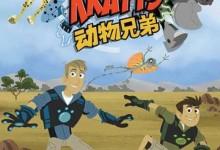 美国益智动画片《动物兄弟 Wild Kratts》第三季全26集 国语版 720P/MP4/6.35 动画片动物兄弟全集下载-儿童动画网