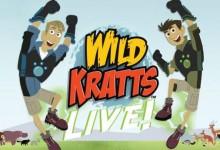 美国益智动画片《动物兄弟 Wild Kratts》第一季全40集 国语版 720P/MP4/3.42G 动画片动物兄弟全集下载-儿童动画网