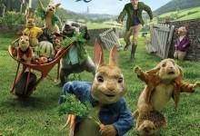 动画电影《比得兔 Peter Rabbit 2018》英语中英双字 720P/MP4/1.47G 动画片比得兔全集下载-儿童动画网