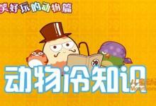儿童益智动画片《动物冷知识》全26集 国语版 720P/MP4/315M 动画片动物冷知识下载-儿童动画网