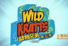 美国益智动画片《动物兄弟 Wild Kratts》第五季全20集 国语版20集+英语版20集 1080P/MP4/6.83G 动画片动物兄弟全集下载-儿童动画网